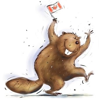 canada-beaver